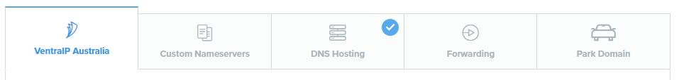 VIPControl DNS Options